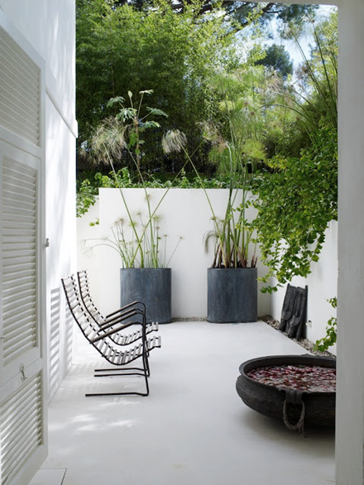 Minimalist Garden Tips For Your Home